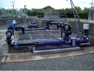 Surface-mounted PC pumps performing suction lift.